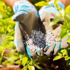 Fertilizante para huerto