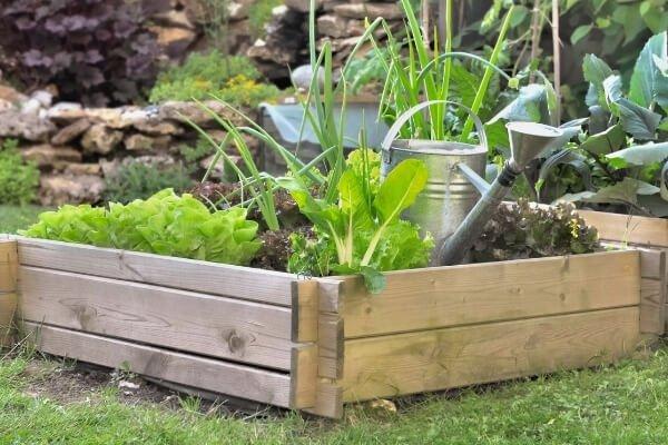 Zona de jardín con bancal cuadrado de suelo de madera