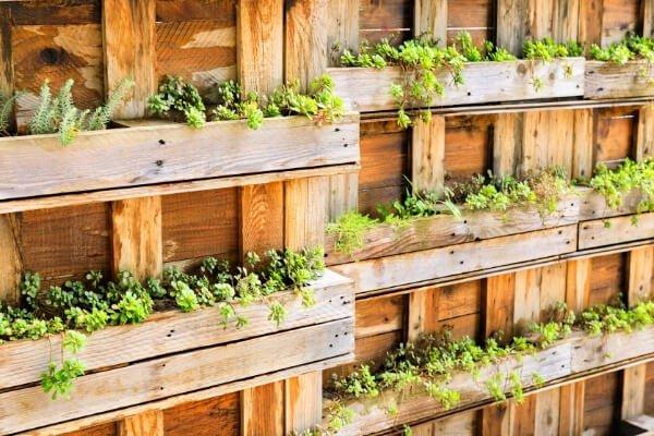 huerto vertical de madera con plantas verdes